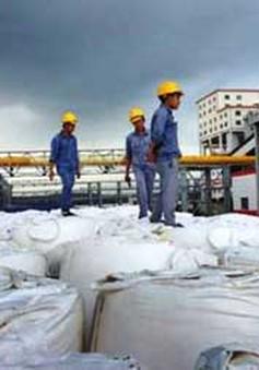 Dự án bauxite Tây Nguyên bước đầu đáp ứng các yêu cầu về kinh tế