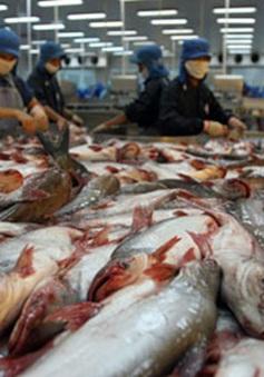 Mỹ điều chỉnh thuế nhập khẩu đối với cá tra Việt Nam