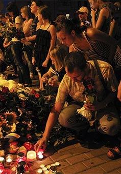 Hà Lan yêu cầu Nga tác động giải quyết vụ rơi máy bay