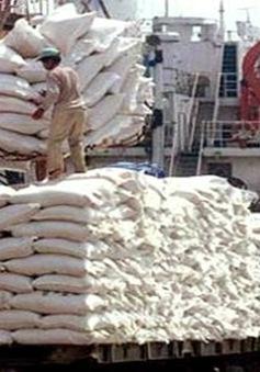 FAO: Việt Nam có thể xuất khẩu đạt 7 triệu tấn gạo
