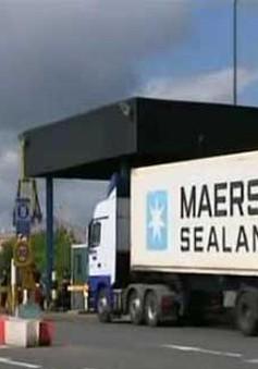 Cảnh sát Anh phát hiện một container chứa 35 người gốc Ấn