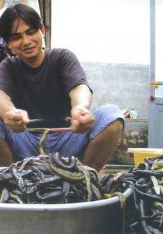 Một lần thử đi chợ rắn