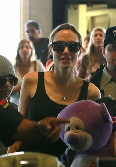 Mẹ con nhà Angelina Joilie đến Hawaii làm phim