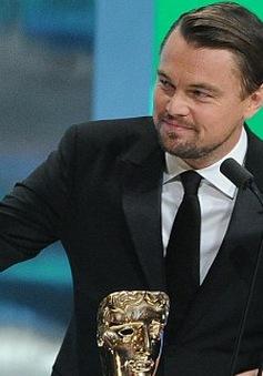 Leonardo DiCaprio không thất vọng khi để trượt giải BAFTA