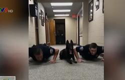 """""""Chết cười"""" chó... hít đất cùng cảnh sát"""