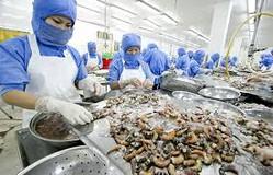Xuất khẩu hải sản Việt Nam đứng trước nguy cơ sụt giảm vào EU