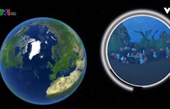 Hơn 8 tỷ tấn nhựa được sản xuất trong 65 năm qua
