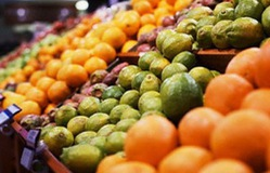 Xuất khẩu rau quả thu 13 triệu USD mỗi ngày