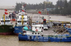 Hiệu quả tàu cá đóng mới theo quy định 67