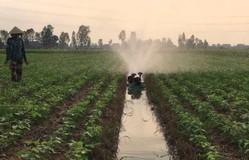 Độc đáo máy tưới rẫy tự động của nông dân An Giang