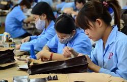 ILO tích cực ủng hộ Việt Nam tăng độ tuổi nghỉ hưu