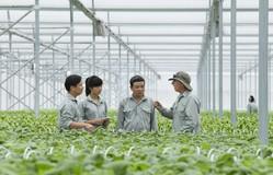 Phát triển gói tín dụng tín chấp cho nông nghiệp