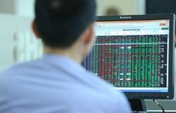 Cú lao dốc lịch sử của thị trường chứng khoán - Bài học đầu tay của nhà đầu tư F0