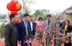Không khí Tết ngập tràn tại Lễ hội hoa đào Nhật Tân