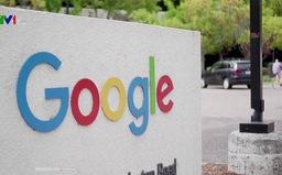 Google đang tìm hiểu thủ tục để mở văn phòng đại diện tại Việt Nam
