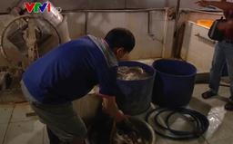 Hơn 1,2 tấn lòng bò được tẩy trắng bằng vôi bột