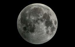 Thử nghiệm sống cô lập trên mặt trăng
