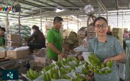 Xuất khẩu trái cây ĐBSCL và những chuyển biến lớn về chất