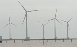 Đức: Gần một nửa sản lượng điện được sản xuất từ năng lượng tái tạo
