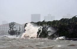 Bão Kalmaegi đổ bộ vào miền Nam Trung Quốc, 25 người bị thương