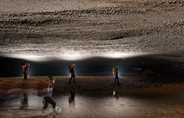 Dự án cáp treo hang Sơn Đoòng: Cần lấy ý kiến UNESCO