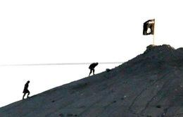 Liên quân không kích các mục tiêu của IS ở Kobani