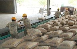 Xi măng dự kiến tăng giá nhẹ trong tháng 10