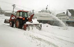 Bão tuyết bất thường làm tê liệt miền Tây Canada