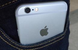 """Bộ đôi iPhone 6 liên tục """"gây rắc rối"""" cho người dùng"""