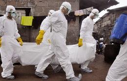 Liberia hủy bầu cử Thượng viện do dịch Ebola