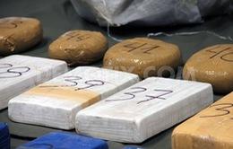 Argentina thu lượng ma túy, tiền giả lớn trước thềm Giáng sinh