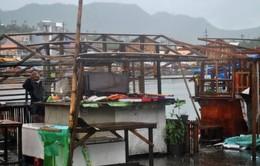 Bão Hagupitsuy yếu sau 2 ngày đổ bộ Philippines