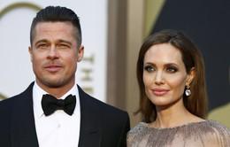 Angelina Jolie muốn trở nên hoàn hảo trong mắt chồng