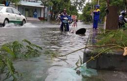 Hải Phòng sau bão số 3: Nước ngập, cây đổ, giao thông gặp khó