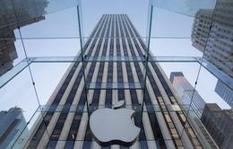 VTV News sẽ tường thuật sự kiện ra mắt iPhone 6