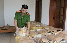 Quảng Trị: Tiêu hủy gần 1,5 tấn hàng hóa không rõ nguồn gốc
