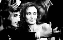 """Angelina Jolie sẵn sàng ở nhà làm """"nữ công gia chánh"""""""