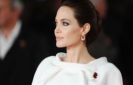 Angelina Jolie đã biết điềm gở khi đóng chung với Brad Pitt?