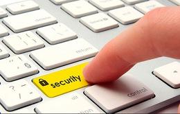 Bảo mật an toàn thông tin đang bị xem nhẹ