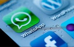 Ứng dụng WhatsApp và Instagram ngày càng được ưa thích