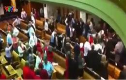 Ẩu đả diễn ra tại Quốc hội Nam Phi