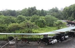 Hà Nội công bố kế hoạch xây bãi đỗ xe ngầm trong CV Thống Nhất