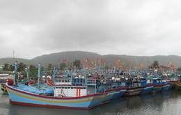 Đà Nẵng ứng phó với bão số 3 (Kalmaegi)