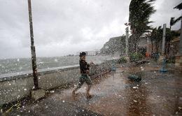 Những thiệt hại ban đầu từ bão Hagupit