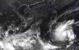 Các địa phương chủ động đối phó với diễn biến bão Jangmi