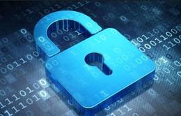 Phát hiện lỗ hổng bảo mật tồn tại… 19 năm trên Windows