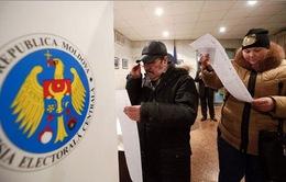 Bầu cử ở Moldova: Đảng Xã hội đứng đầu về số phiều