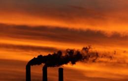 Hội nghị COP 20: Tìm giải pháp hạn chế hiệu ứng nhà kính