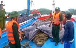Khánh Hòa chủ động ứng phó bão số 5