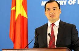 Việt Nam không bán phá giá mặt hàng tôm vào thị trường Hoa Kỳ